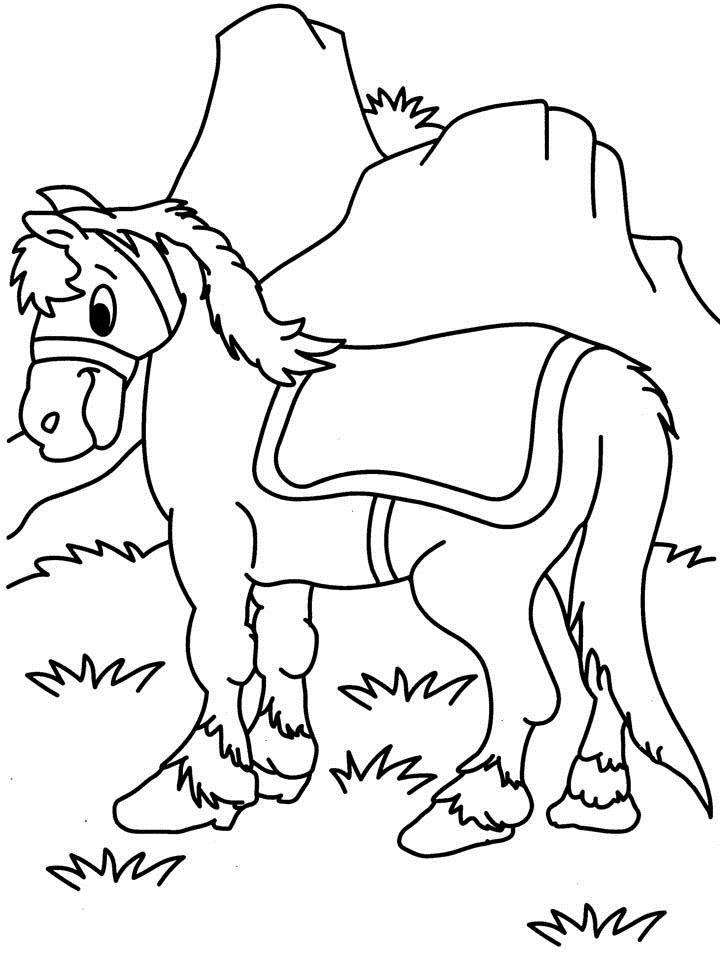 horse coloring pages pdf - DriverLayer Search Engine