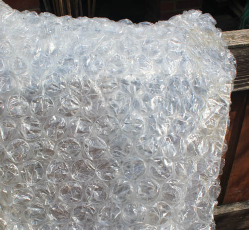 Bubble wrapping your greenhouse – yes, or no? - by Matthew Biggs