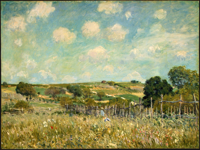 http://upload.wikimedia.org/wikipedia/commons/2/2e/Meadow%2C_Alfred_Sisley%2C_1875.jpg
