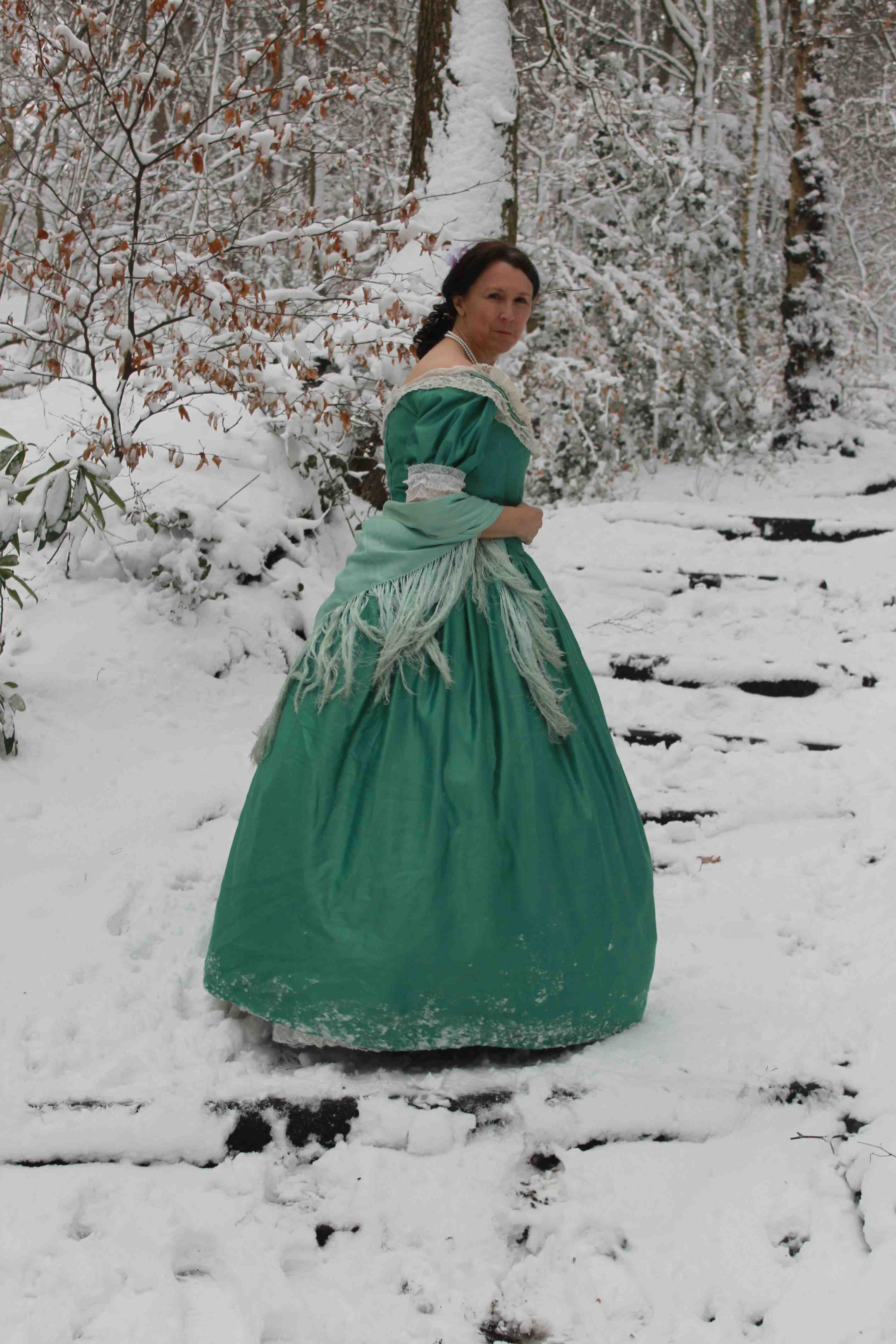 drop dead gorgeous a tldr tale of arsenic in victorian