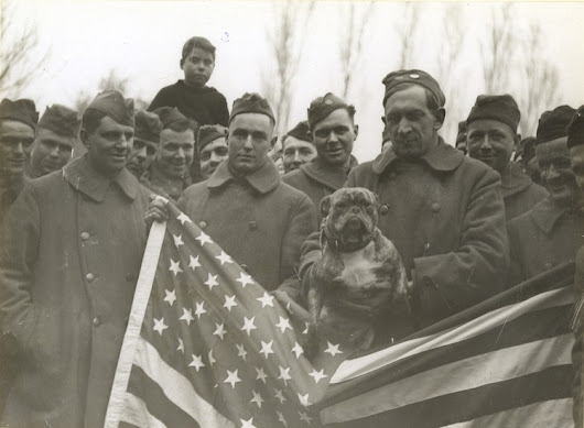 The Animals That Helped Win World War I (Smithsonian)