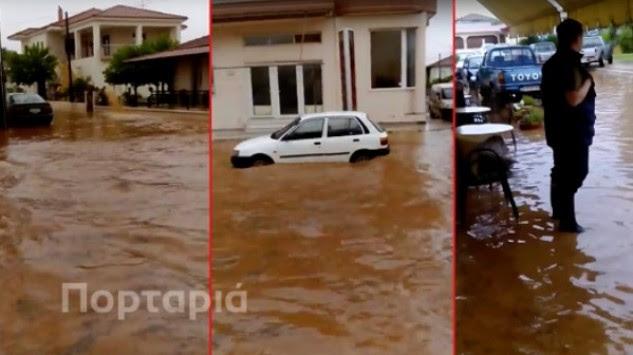 Πλημμύρισε η Χαλκιδική! Έπεσαν δέντρα στη Θεσσαλονίκη και δημιουργήθηκε κυκλοφοριακό χάος - ΒΙΝΤΕΟ
