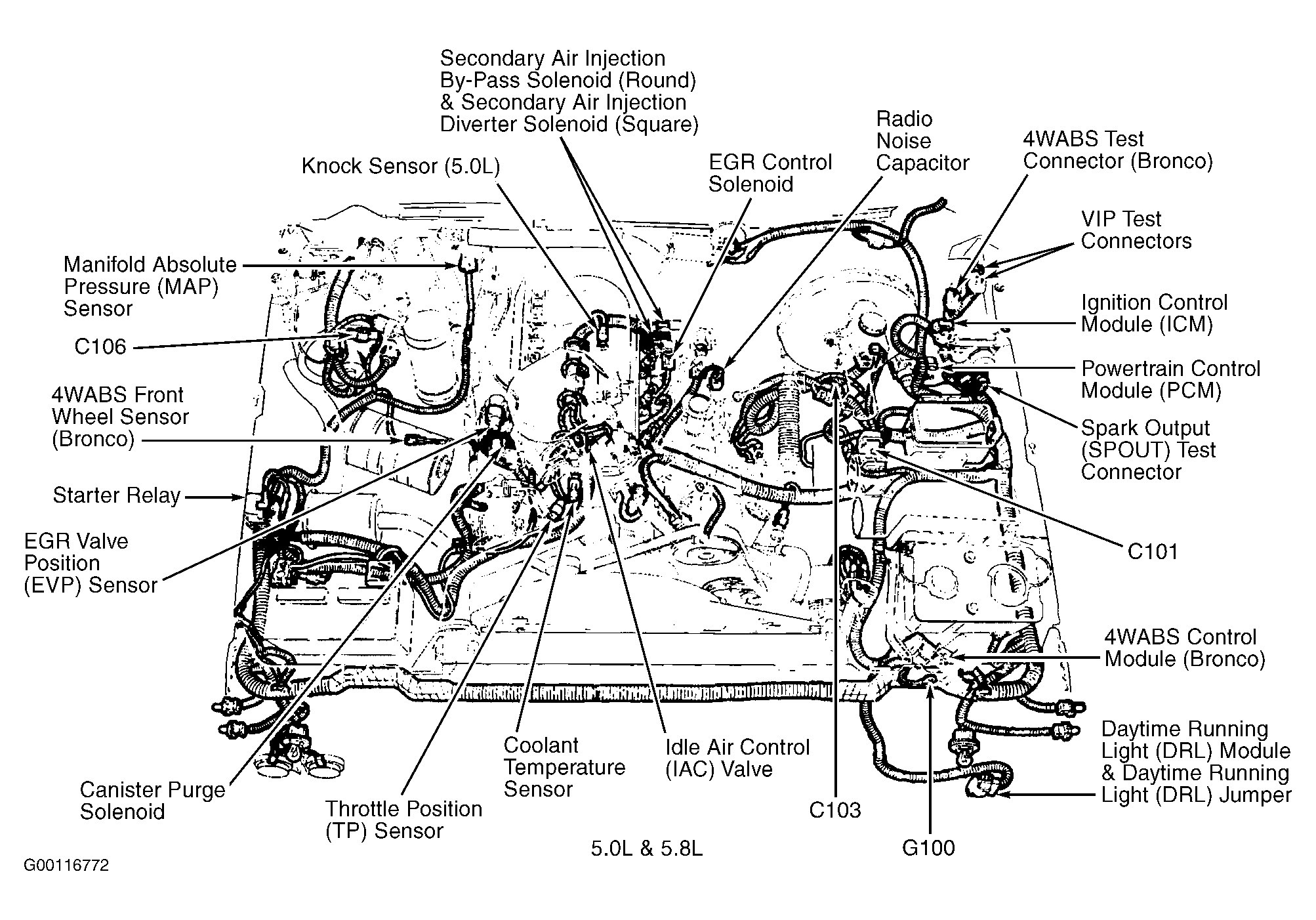1975 Ford 302 Engine Diagram - Wiring Diagram Models slim-applied -  slim-applied.zeevaproduction.it | 1979 V8 Ford Engine Diagram |  | slim-applied.zeevaproduction.it