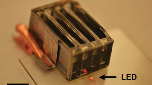Battery that dissolves in the body could power embedded health sensors