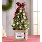 Christmas Tree Farm Spruce - Holiday Tree by 1-800 Flowers