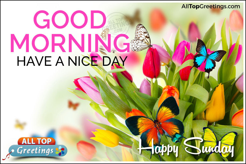 Good Morning Have A Nice Day Happy Sunday Pictures Photos And