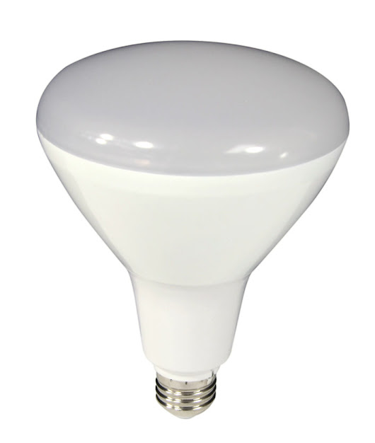 LED's are the Energy Efficient Choice