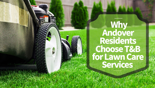 Why Andover Residents Choose T&B for Lawn Care Services