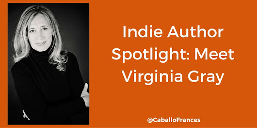 Virginia Gray: One Indie Author's Book Promotion Strategy