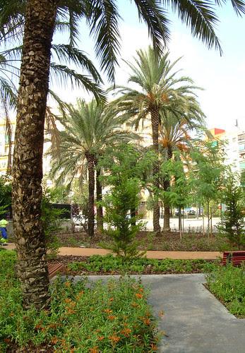 Jardin en el Barrio de Cuatre Carreres Valencia F01