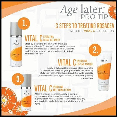 Vital C Hydrating Repair Creme Skinology Skincare Llc