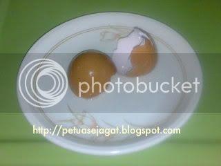 gambar kulit telur