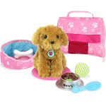 Plush Puppy Carrier & Accessory Set