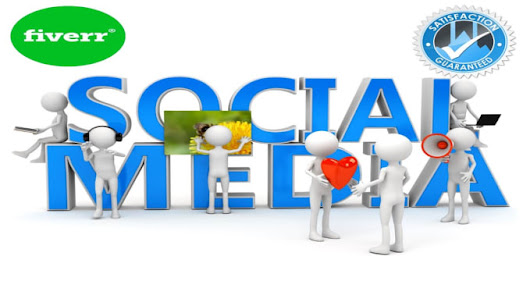I will do provide social media marketing help