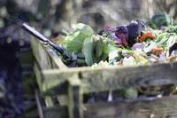 raccolta domestica rifiuti alimentari