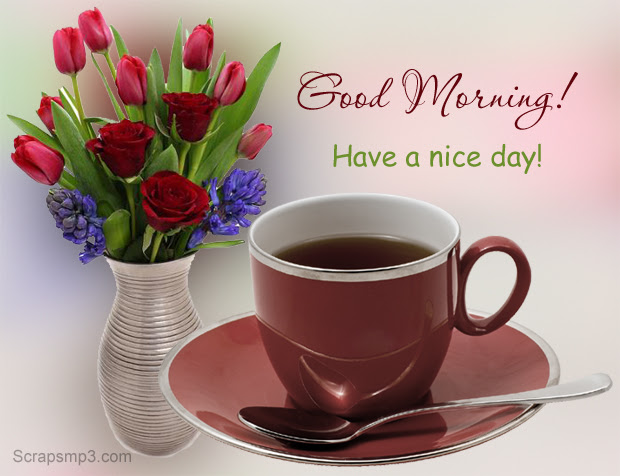 Good Morning Images Good Morning Pictures