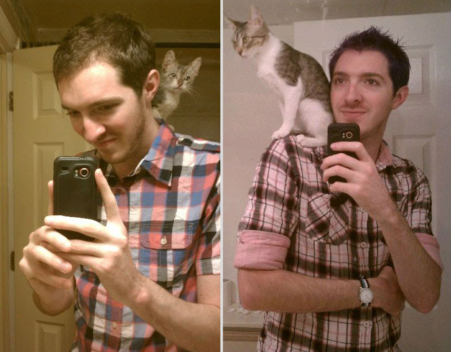 pets-before-after-8
