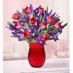 1-800-Flowers Bunches of Love Tulip & Iris with Red Vase - Flower Arrangements, Bouquets & Gifts for Any Occasion