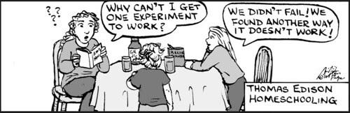 Home Spun comic strip #543
