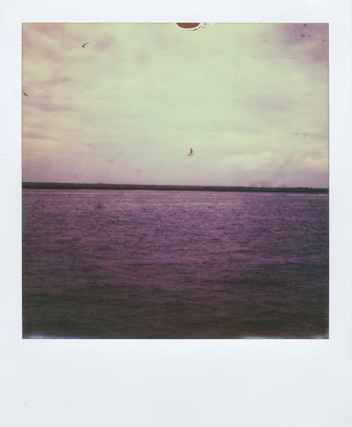 Polaroids: The Atlantic Coast