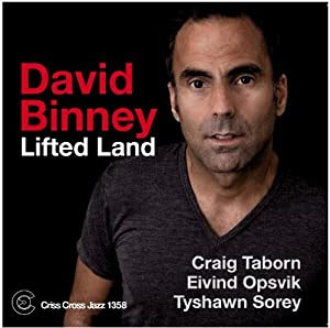 David Binney - Lifted Land cover