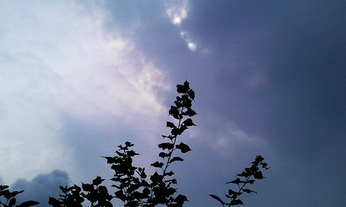20120805 by 我是歐嚕嚕 (I'm Olulu...)