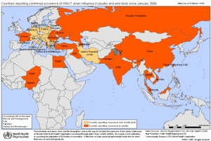 Global H5N1Inanimalconfirmedsince2006 20060309