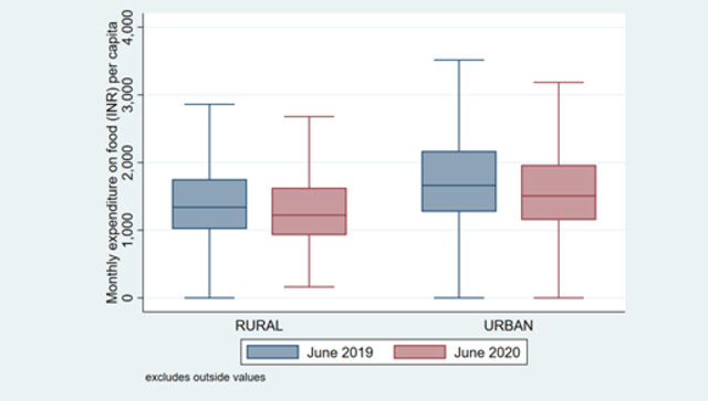 Food expenditures per capita reduced only marginally at the household level between June 2019 and June 2020. Illustration by Anirudh Tagat