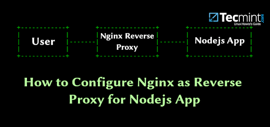 How to Configure Nginx as Reverse Proxy for Nodejs App