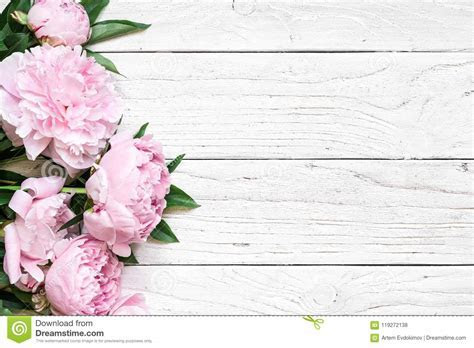 Pink Peony Flowers Over White Wooden Table With Copy Space