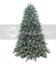 2008 undecorated christmas tree