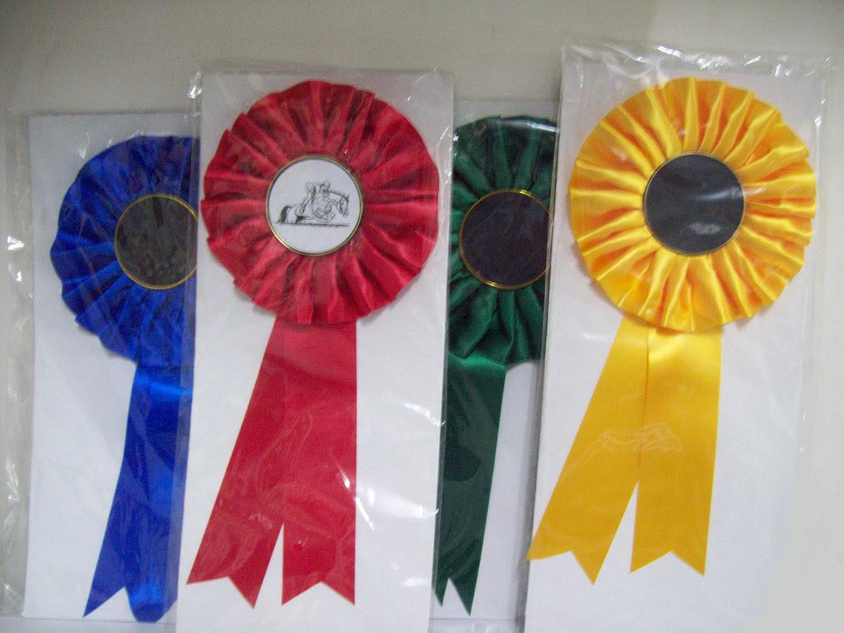 """Résultat de recherche d'images pour """"equitation médaille"""""""