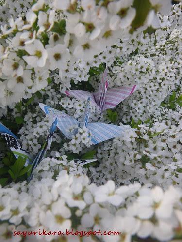483rd_485th_paper_cranes