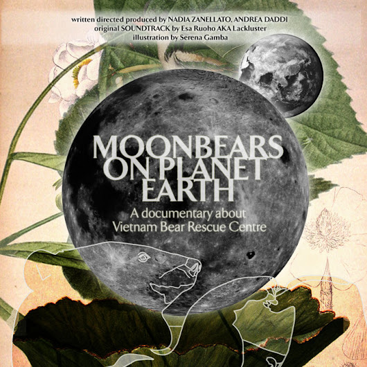 Moonbears on Planet Earth: Original Soundtrack, by Lackluster