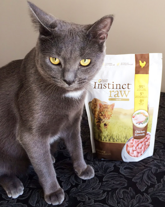 Nature's Variety Instinct® Raw: My #InstinctRaw Experience, Your Coupon