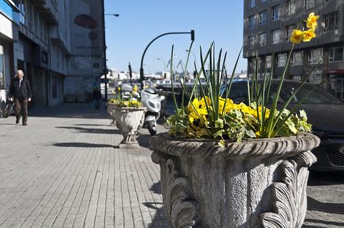 La primavera ha llegado...