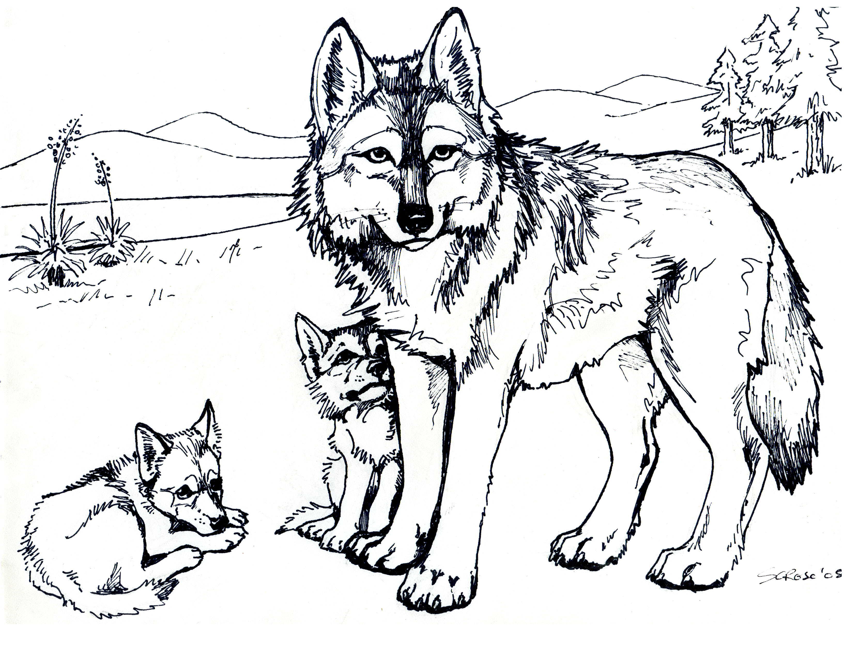 The Burgess Animal Book for Children Coloring Page ...