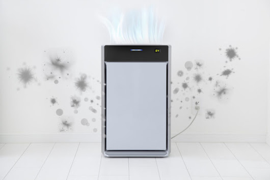 Why Invest in an Air Purifier?
