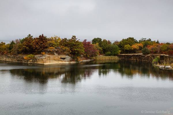 the colors of autumn adorn the trees on the edge of the quarry, Halibut Point State Park