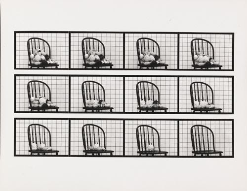 Hollis Frampton, Sixteen Studies from Vegetable Locomotion, 1975