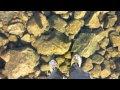 Intip Trik Traveler Sakti, Bisa Berjalan di Atas Air!