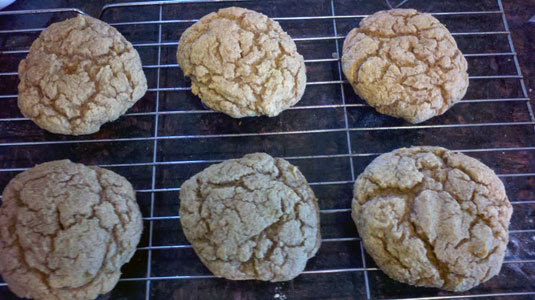 Banana-Doodles - Protein Cookie Recipe by Chelle Stafford