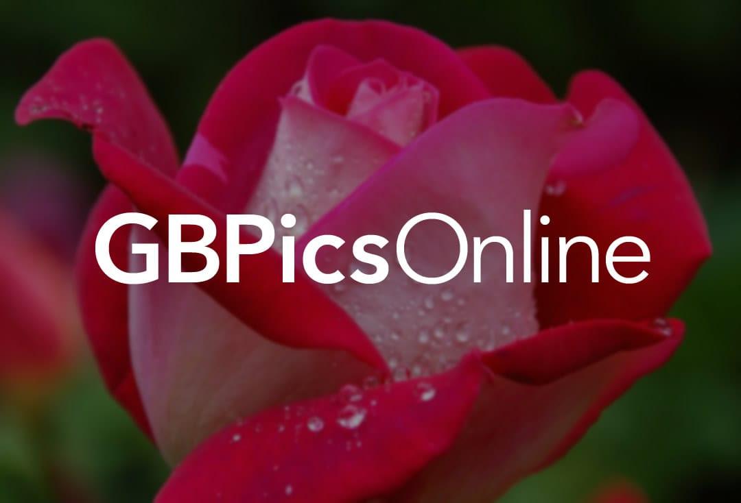 Drachen GB Pic : 8