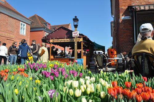 Tulpenfest in Potsdam