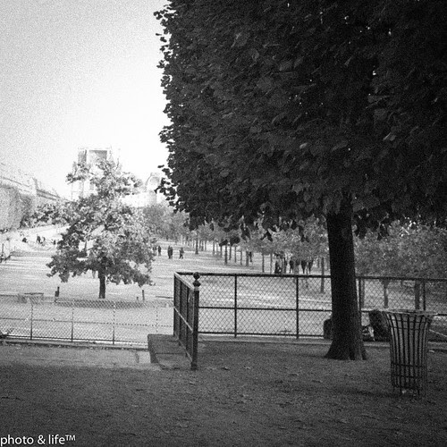 22101106 by Jean-Fabien - photo & life™