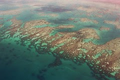 Great Barrier Reef - OZ