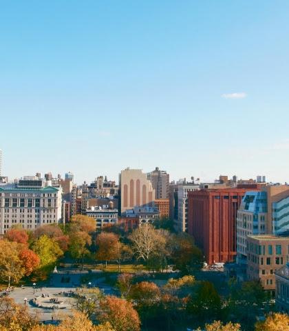 New York University College of Global Public Health   NYU ...