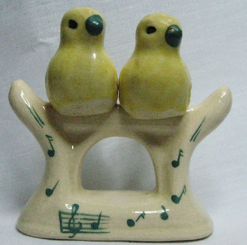 salt & pepper birds