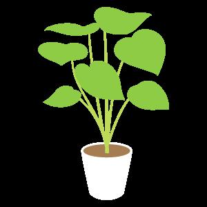 観葉植物の無料イラスト5 花植物イラスト Flode Illustration フロ