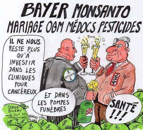 http://img.over-blog-kiwi.com/0/55/62/38/20160930/ob_57770b_monsanto-bayer-cancer-poison.jpg